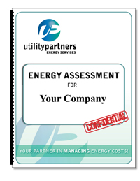 Free Energy Assessment For Your Company